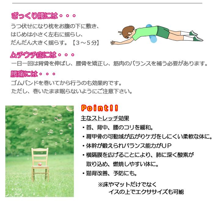 rollaer_04.jpg