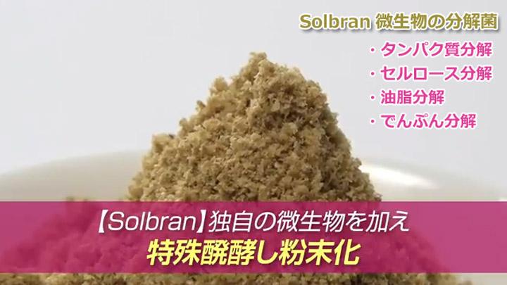 solbran_03.jpg